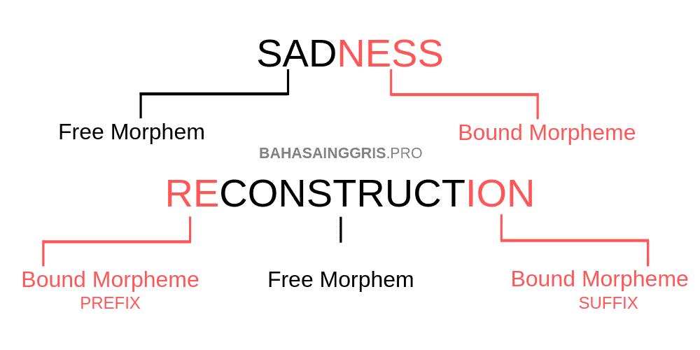 Contoh Morpheme Komponen Bahasa  Inggris