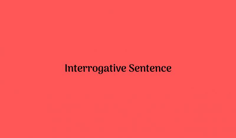 Pengertian, Jenis dan Contoh Interrogative Sentence