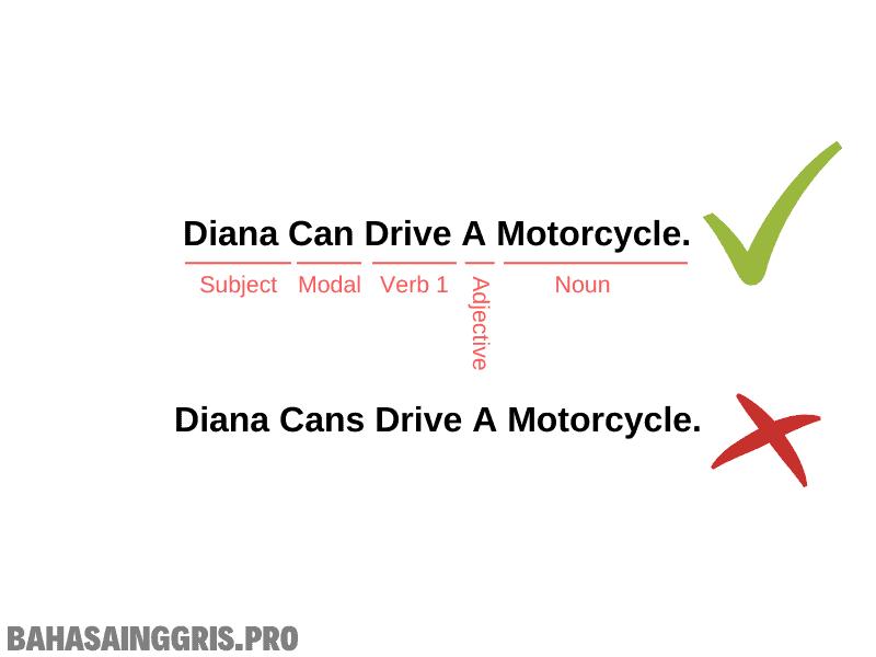 Aturan Penggunaan Modals Verb